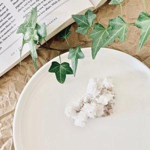 aragonite - blanche - corail